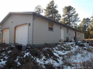 18749  Smokey Pine Road  , Peyton, CO 80831 (#1823733) :: Cherry Creek Properties, LLC