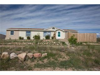 20780  El Nino Point  , Fountain, CO 80817 (#1894109) :: Cherry Creek Properties, LLC