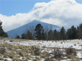 5087  County 1 Road  , Cripple Creek, CO 80813 (#2366432) :: Action Team Realty