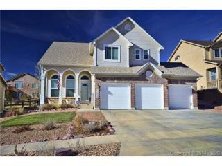 11840  Blueridge Drive  , Colorado Springs, CO 80921 (#3493189) :: Action Team Realty