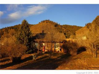 222  Park Street  , Palmer Lake, CO 80133 (#3676679) :: Cherry Creek Properties, LLC