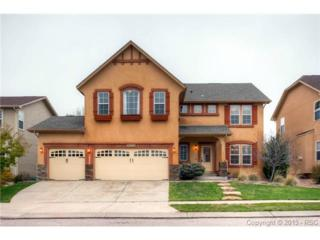 8417  Winding Passage Drive  , Colorado Springs, CO 80924 (#4753310) :: Cherry Creek Properties, LLC