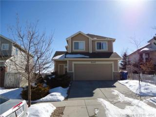 5047  Prairie Grass Lane  , Colorado Springs, CO 80922 (#4997089) :: Cherry Creek Properties, LLC