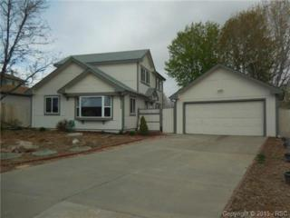 2755  Walton Creek Drive  , Colorado Springs, CO 80922 (#5454101) :: Cherry Creek Properties, LLC