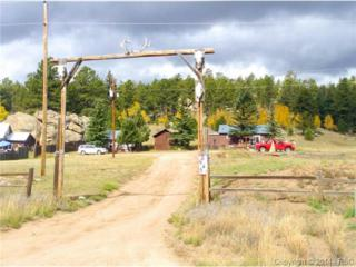 6645  County 92 Road  , Lake George, CO 80827 (#5552972) :: Action Team Realty