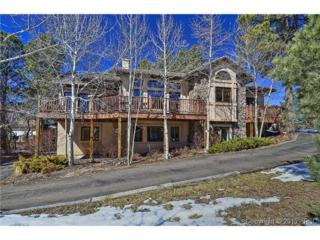 1291  Meadowlake Way  , Monument, CO 80132 (#5825607) :: Cherry Creek Properties, LLC
