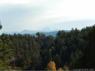 County 111 Road  , Florissant, CO 80816 (#6116839) :: Action Team Realty
