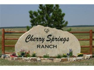 18562  Cherry Springs Ranch Drive  , Monument, CO 80132 (#7163901) :: Cherry Creek Properties, LLC