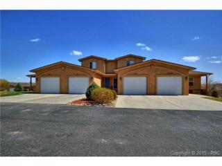 3611  Indigo Ridge Point  , Colorado Springs, CO 80910 (#8158729) :: Cherry Creek Properties, LLC