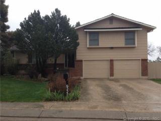 6555  Bull Hill Court  , Colorado Springs, CO 80919 (#8438705) :: Cherry Creek Properties, LLC