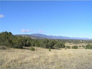 0  Siloam Road  , Pueblo, CO 81005 (#8692342) :: Cherry Creek Properties, LLC