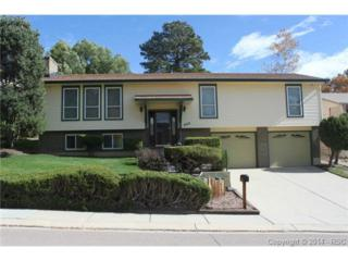 4815  Brown Valley Lane  , Colorado Springs, CO 80918 (#8896012) :: Action Team Realty
