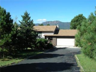 19410  Wildwood Way  , Monument, CO 80132 (#9051091) :: Cherry Creek Properties, LLC