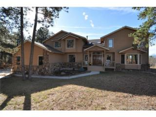 1315  Blueberry Hills Road  , Monument, CO 80132 (#9081407) :: Action Team Realty