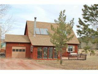 220  Vaquero Senda Not Applicable  , Woodland Park, CO 80863 (#9906265) :: Cherry Creek Properties, LLC