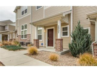 2937  Tumblewood Grove  , Colorado Springs, CO 80910 (#3474317) :: Action Team Realty