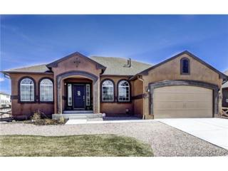 7193  Cottonwood Tree Drive  , Colorado Springs, CO 80927 (#5343413) :: Action Team Realty