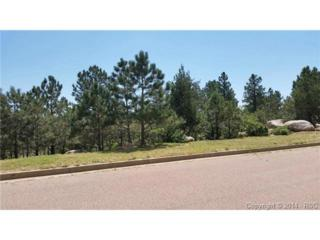 6075  Buttermere Drive  , Colorado Springs, CO 80906 (#8694157) :: Action Team Realty