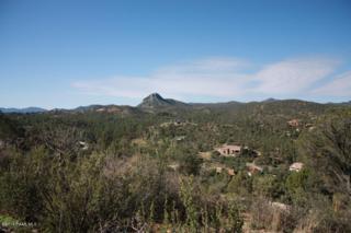 1825 N Camino Cielo  , Prescott, AZ 86305 (#980532) :: The Hardy Team
