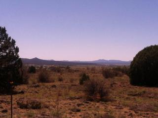 1001 E Verde Ranch Road  , Paulden, AZ 86334 (#980941) :: Hardy Team - John Hardy Realty