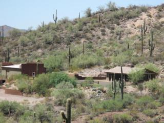 32747 S Shadow Mountain  , Black Canyon City, AZ 85324 (#986015) :: The Hardy Team