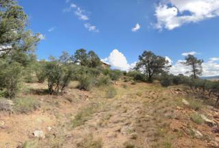 1813 N Camino Cielo  , Prescott, AZ 86305 (#972941) :: The Hardy Team