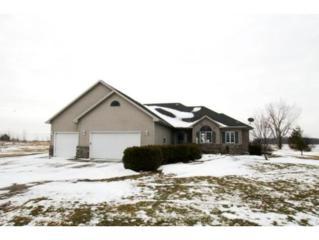 W1687  Shady Rd  , Seymour, WI 54165 (#50113156) :: Todd Wiese Homeselling System, Inc.