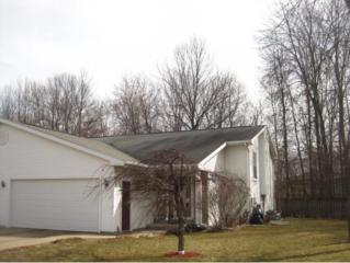1184  Nier Ct  , Green Bay, WI 54303 (#50116321) :: Dallaire Realty