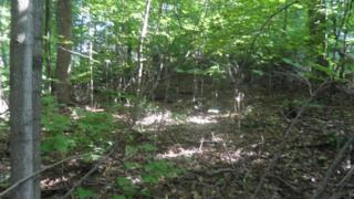 5  Spring Trail  , Carrol Valley, PA 17320 (MLS #21409953) :: The Jim Powers Team