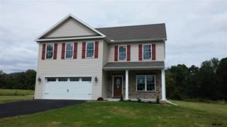 425 A  Thundergust Mill Road  , Wellsville, PA 17365 (MLS #21411976) :: The Jim Powers Team