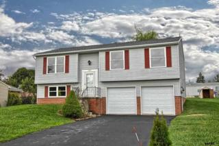 2731  Danielle  , Dover, PA 17315 (MLS #21502374) :: The Jim Powers Team