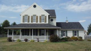 4140  Board Road  , Manchester, PA 17345 (MLS #21411586) :: The Jim Powers Team