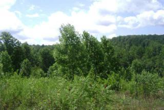 Lot 55 Lo Cross Creek Drive  , Rutherfordton, NC 28139 (MLS #33491) :: Washburn Real Estate