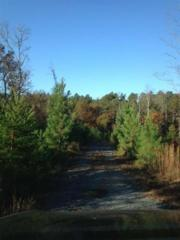 lot 315  North Dakota  , Rutherfordton, NC 28139 (MLS #38445) :: Washburn Real Estate