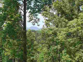 Lot # 40  Moriah Drive  , Rutherfordton, NC 28139 (MLS #39389) :: Washburn Real Estate