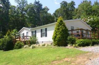 701  High Falls Road  , Hendersonville, NC 28792 (MLS #39513) :: Washburn Real Estate