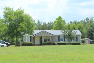 290  Low Bridge Road  , Forest City, NC 28043 (MLS #40949) :: Washburn Real Estate