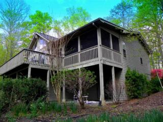 Lake Lure, NC 28746 :: Washburn Real Estate