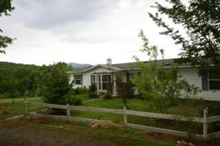 1298  Grassy Knob Road  , Rutherfordton, NC 28139 (MLS #41058) :: Washburn Real Estate