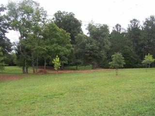 245  John Cline Road  , Cherryville, NC 28021 (MLS #41107) :: Washburn Real Estate