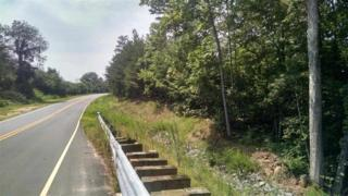 Henson Rd.  , Forest City, NC 28043 (MLS #41157) :: Washburn Real Estate