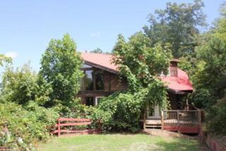 418  Williams Circle  , Lake Lure, NC 28746 (MLS #41270) :: Washburn Real Estate