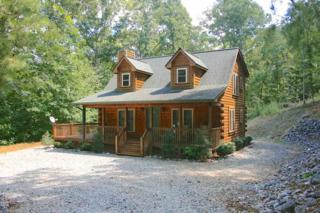 584  River Ridge Parkway  , Rutherfordton, NC 28139 (MLS #41285) :: Washburn Real Estate