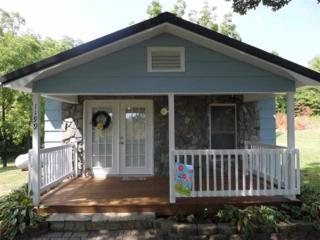 1199  Mcentire Road  , Rutherfordton, NC 28139 (MLS #41293) :: Washburn Real Estate