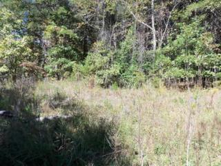 Lot 12  Pipers Neck  , Lake Lure, NC 28746 (MLS #41420) :: Washburn Real Estate