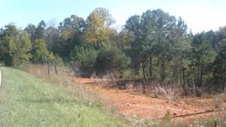0  Solomon Trail  , Ellenboro, NC 28040 (MLS #41434) :: Washburn Real Estate