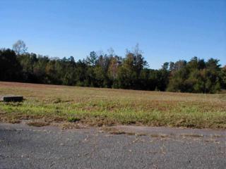 Lot # 7  Quail Hill Dr.  , Rutherfordton, NC 28139 (MLS #41443) :: Washburn Real Estate
