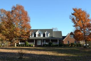 939  Painters Gap Rd  , Rutherfordton, NC 28139 (MLS #41496) :: Washburn Real Estate