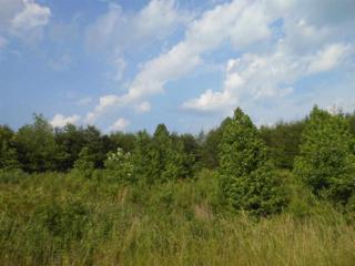 252  Luckadoo Mtn. Road  , Bostic, NC 28018 (MLS #41527) :: Washburn Real Estate