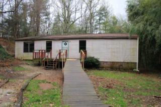 841  Substation Road  , Saluda, NC 28773 (MLS #41528) :: Washburn Real Estate
